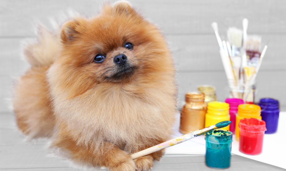Dog with paint brush for Sip and Paint