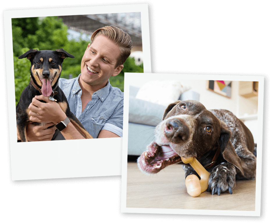 Man with dog and dog with Benebone Wishbone