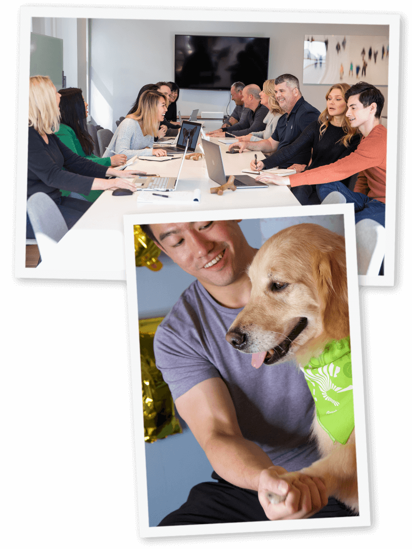 Benebone team and man with dog at table