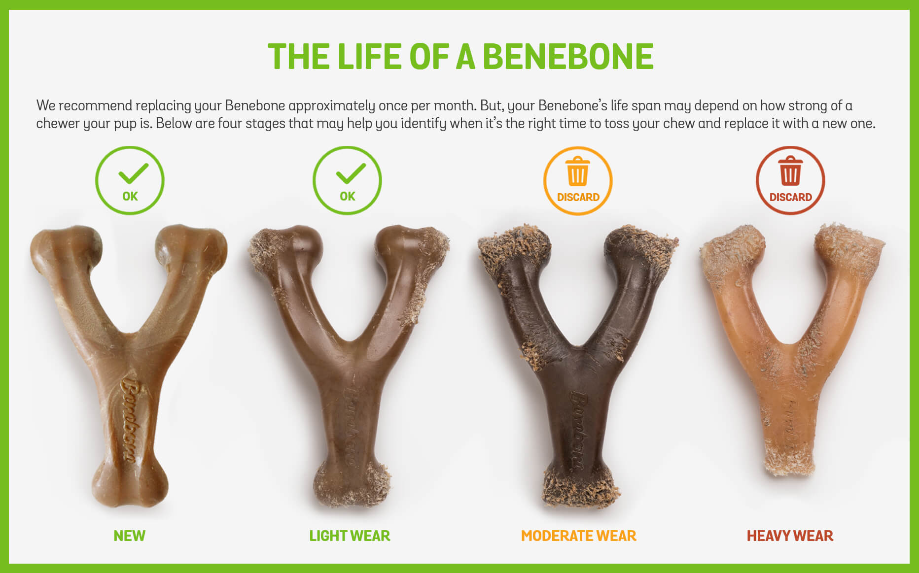 Life of a Benebone. Below are 4 stages that may help you identify when to replace your chew with a new one.