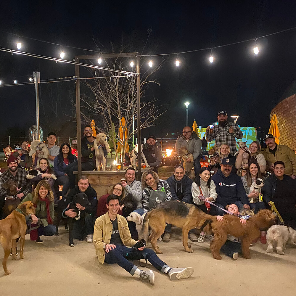 group photo of people and dogs